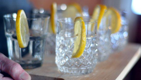 gin food pairing