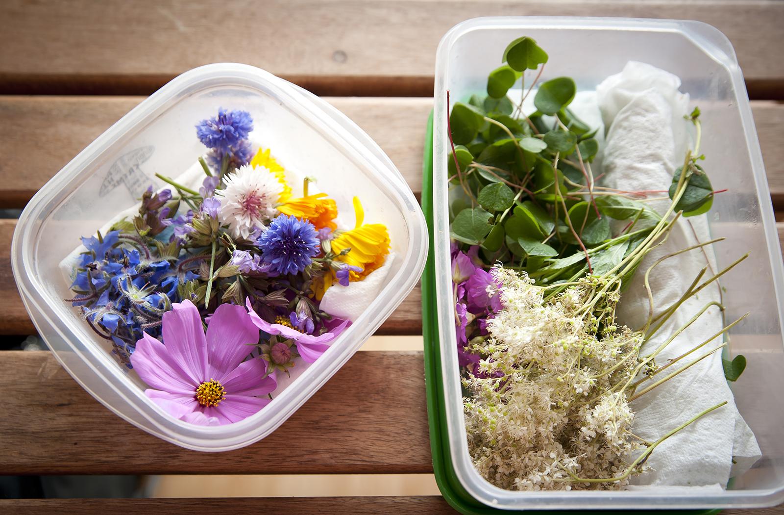 les fleurs comestibles pour une cuisine color e et pleine. Black Bedroom Furniture Sets. Home Design Ideas